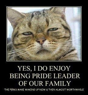 YES, I DO ENJOY  BEING PRIDE LEADER  OF OUR FAMILY