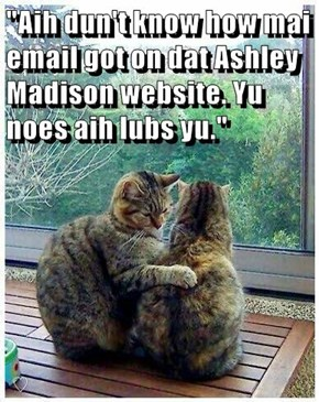 """""""Aih dun't know how mai email got on dat Ashley Madison website. Yu noes aih lubs yu."""""""