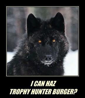 I CAN HAZ  TROPHY HUNTER BURGER?