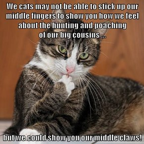 We cats may not be able to stick up our middle fingers to show you how we feel about the hunting and poaching                              of our big cousins ...  but we could show you our middle claws!