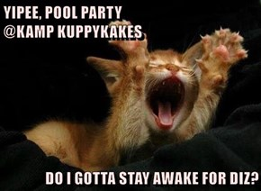 YIPEE, POOL PARTY                                                    @KAMP KUPPYKAKES  DO I GOTTA STAY AWAKE FOR DIZ?