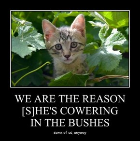 WE ARE THE REASON [S]HE'S COWERING IN THE BUSHES