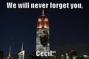 We will never forget you,   Cecil.