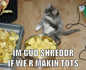 IM GUD SHREDDR                                    IF WE R MAKIN TOTS