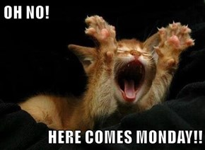 OH NO!  HERE COMES MONDAY!!