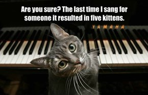 Are you sure? The last time I sang for someone it resulted in five kittens.