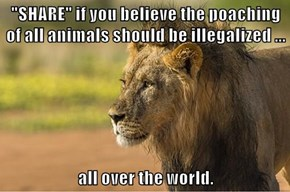 """""""SHARE"""" if you believe the poaching of all animals should be illegalized ...  all over the world."""
