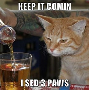 KEEP IT COMIN  I SED 3 PAWS