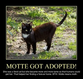 MOTTE GOT ADOPTED!