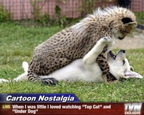 """Cartoon Nostalgia - When I was little I loved watching """"Top Cat"""" and """"Under Dog"""""""