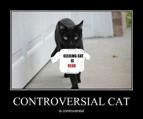 CONTROVERSIAL CAT