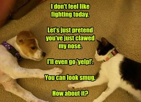 I don't feel like fighting today.  Let's just pretend you've just clawed my nose.  I'll even go 'yelp!'.  You can look smug.  How about it?