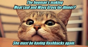 The hooman's making  Meat Loaf and Wavy Gravy for dinner?