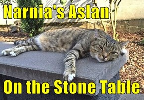Narnia's Aslan  On the Stone Table