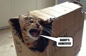 DADDY'S HOME!!!!!!!!
