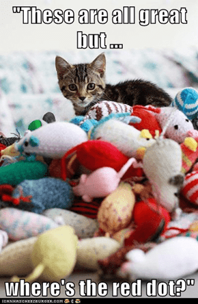 """""""These are all great but ...  where's the red dot?"""""""