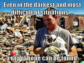 Even in the darkest and most difficult of situations ...   a ray of hope can be found.