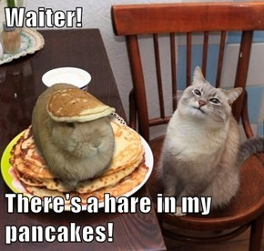 Waiter!  There's a hare in my pancakes!