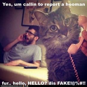 Yes, um callin to report a hooman  fur.. hello, HELLO? dis FAKE!@%#!!