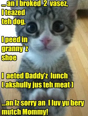 ... an I broked  2  vasez, I teazed  teh dog,  I peed in  granny`z  shoe  I  aeted Daddy'z  lunch ( akshully jus teh meat )   ...an Iz sorry an  I luv yu bery mutch Mommy!