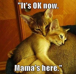 """It's OK now.  Mama's here."""