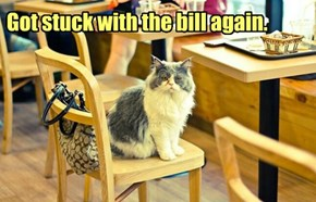 Got stuck with the bill again.
