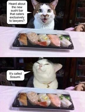 Pun cat.