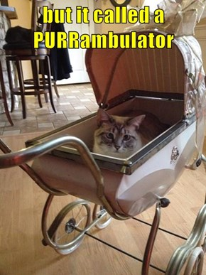 but it called a PURRambulator