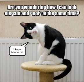 You, human, just look goofy.