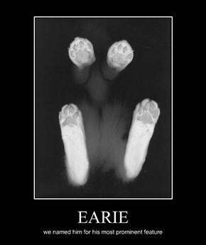 EARIE