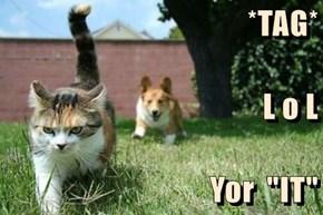 """*TAG* L o L Yor  """"IT"""""""