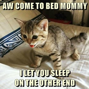 AW COME TO BED MOMMY  I LET YOU SLEEP                             ON THE OTHER END
