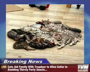Breaking News - Cats Aid Family With Trapdoor to Wine Cellar in Avoiding Thirsty Party Guests...