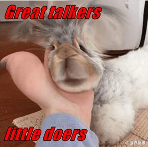 Great talkers  little doers