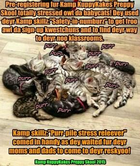 Pre-registering fur Kamp KuppyKakes Preppy Skool 2015