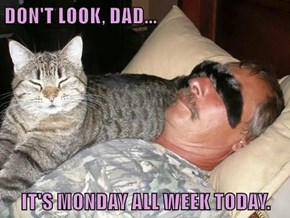 DON'T LOOK, DAD...  IT'S MONDAY ALL WEEK TODAY.