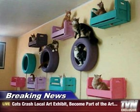 """I Call It """"Art In Meowtion."""""""