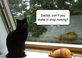 Daddy, can't you make it stop raining?