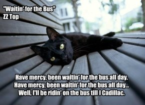 """Waitin' for the Bus"" : ZZ Top"