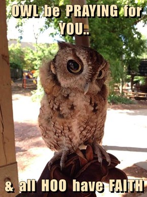 OWL  be  PRAYING  for YOU..  &  all  HOO  have  FAITH