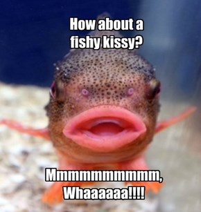 How about a  fishy kissy!