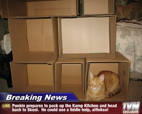 Breaking News - Punkin prepares to pack up the Kamp Kitchen and head back to Skool.  He could use a liddle help, aifinkso!
