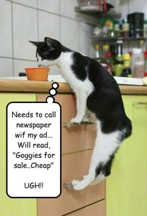 "Needs to call newspaper wif my ad...  Will read, ""Goggies for sale..Cheap""  UGH!!"