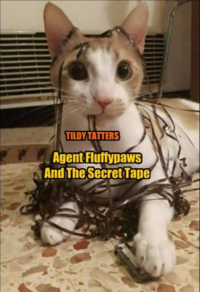 Agent Fluffypaws  And The Secret Tape