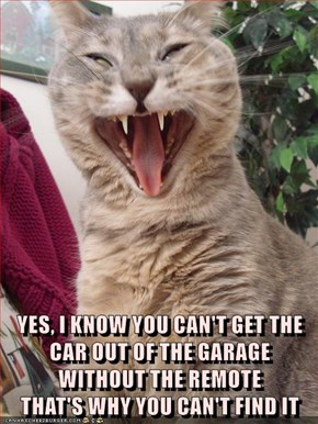 YES, I KNOW YOU CAN'T GET THE CAR OUT OF THE GARAGE WITHOUT THE REMOTE                     THAT'S WHY YOU CAN'T FIND IT