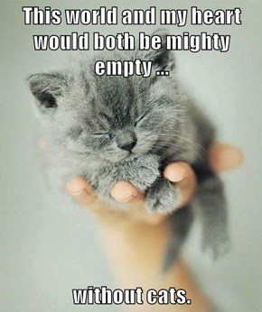This world and my heart would both be mighty empty ...  without cats.