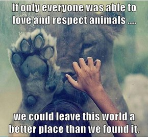 If only everyone was able to love and respect animals ....  we could leave this world a better place than we found it.