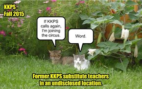 The KKPS faculty experience has a lasting effect.