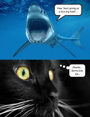 Cat-tharsis