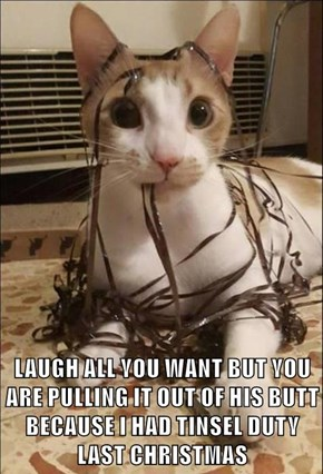 LAUGH ALL YOU WANT BUT YOU ARE PULLING IT OUT OF HIS BUTT BECAUSE I HAD TINSEL DUTY LAST CHRISTMAS